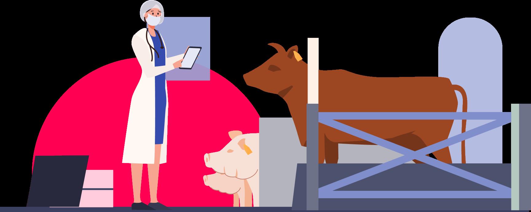 Vetera für Nutztierpraxen